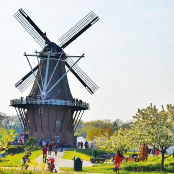 Windmill Event Venue